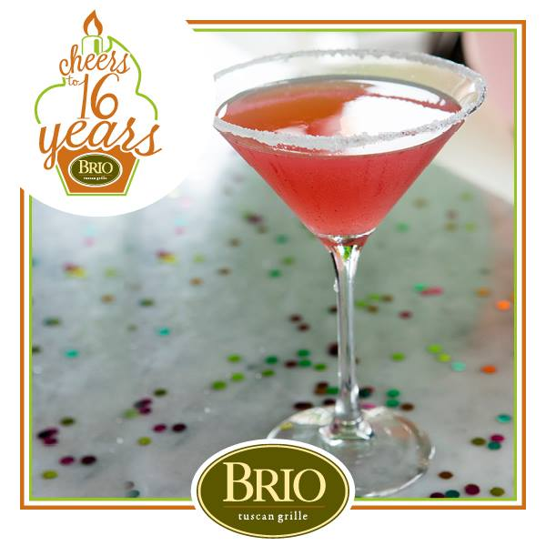 brio tuscan grille cheers to 16 years