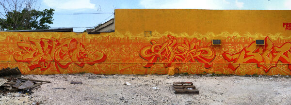 Wynwood Wall 08